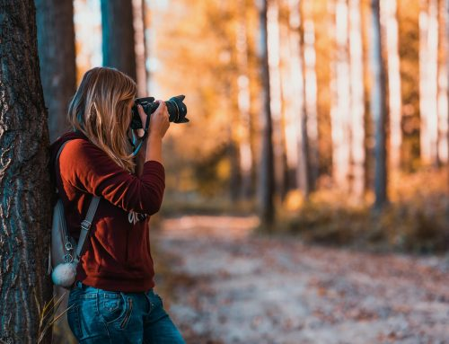 3 Top Tips for Budding Photographers