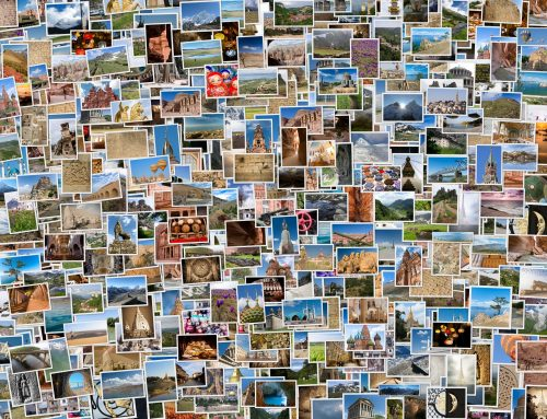 Using Metadata to Organize Digital Images
